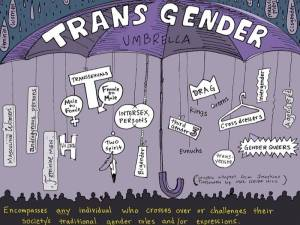 transgender umbrella for blog